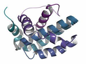 aptamer protein