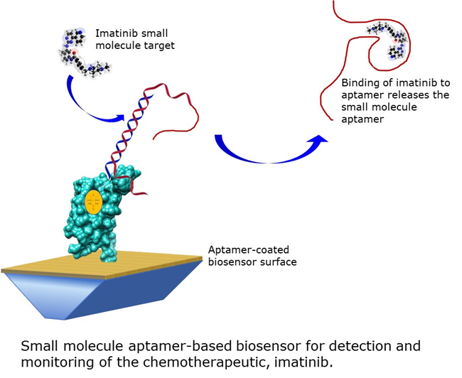 Aptamer coated biosensor surface