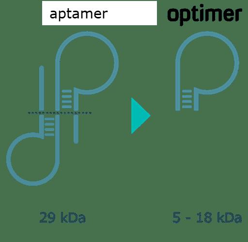 aptamer to optimer